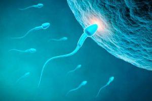 9-curiosidades-sobre-el-semen-y-los-espermatozoides-3